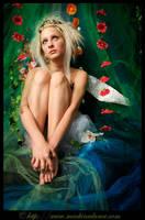 faerie dreams by starlitziggy