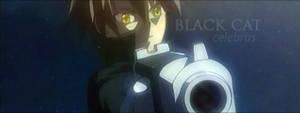 Black Cat Tag by celebrus