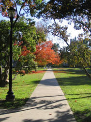 pathway by kneesocks