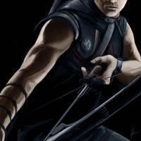 Avengers: Hawkeye by icarus-falls