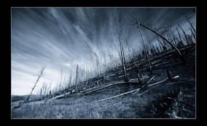 The Burn Land by Notoriouscadi