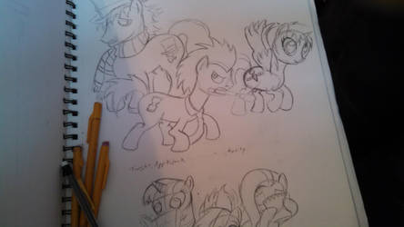 new doctor whooves by misstresshero