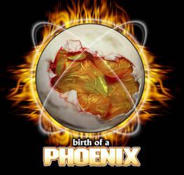 Birth of a Phoenix by forkboy