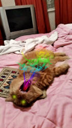 Rainbow Cat Breath by Galato901
