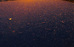 Quick shots: Frosty car roof (2) by korenwolf