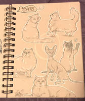 Lilly-Lamb Sketchbook 2018 Part 16 by Lilly-Lamb