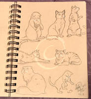Lilly-Lamb Sketchbook 2018 Part 17 by Lilly-Lamb