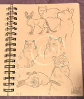 Lilly-Lamb Sketchbook 2018 Part 18 by Lilly-Lamb