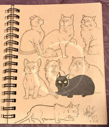 Lilly-Lamb Sketchbook 2018 Part 20 by Lilly-Lamb