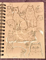 Lilly-Lamb Sketchbook 2018 Part 21 by Lilly-Lamb