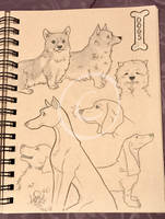 Lilly-Lamb Sketchbook 2018 Part 22 by Lilly-Lamb