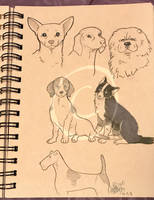 Lilly-Lamb Sketchbook 2018 Part 25 by Lilly-Lamb