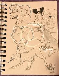 Lilly-Lamb Sketchbook 2018 Part 27 by Lilly-Lamb