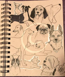 Lilly-Lamb Sketchbook 2018 Part 29 by Lilly-Lamb