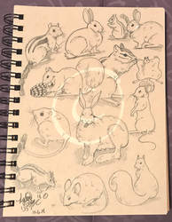 Lilly-Lamb Sketchbook 2018 Part 33 by Lilly-Lamb