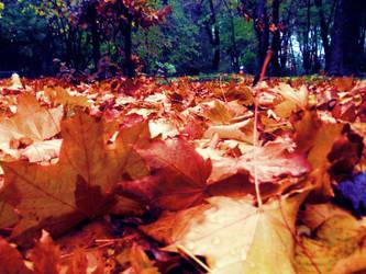 Snapshots in Copou Garden 2 by ju5tfstyle