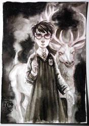 Harry and His Patronus Charm by feliciacano