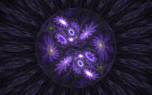through the eye of a bee by deepbluerenegade