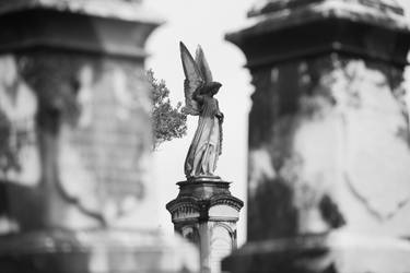 Rosehill Angel by BobbityJones