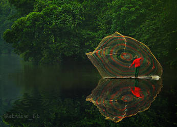 - THE FISHERMAN - by abdieft