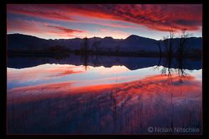 Eastern Sierra Reflection by narmansk8