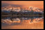 Eastern Sierra Sunrise by narmansk8