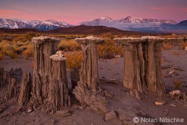 Mono Lake Sand Tufa Dawn by narmansk8