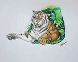 Tiger drawing - Project of tattoo by JakubQaazAdamski