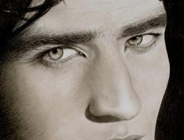 Edward a lion at Twilight by Dragonsanddaffodils