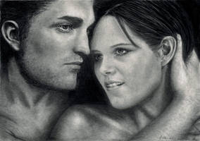 Twilight - A Perfect Love by Dragonsanddaffodils