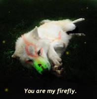 Okami: You Are My Firefly. by Brittani752