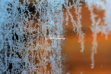 Ice Crystals by AniekPhotography