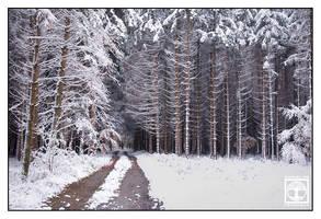 Cold as Ice by SchwarzWieEbenholZ