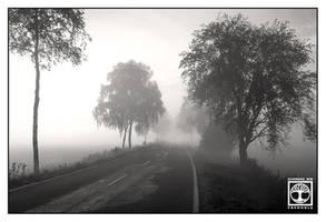 Morning's on its Way.bw by SchwarzWieEbenholZ