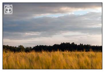 Rural Lullaby by SchwarzWieEbenholZ