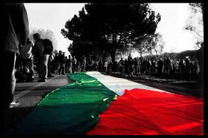 Demonstrating for Palestine by jodosha