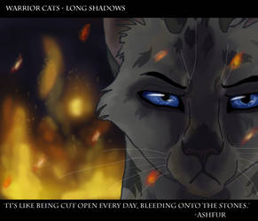 You have no idea how much pain I'm in - Ashfur by Poison-Storm