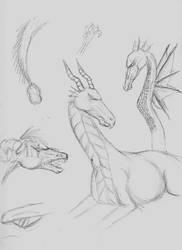 Dragon sketches by SilverChakra