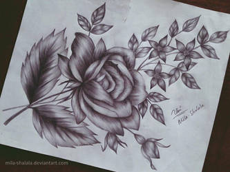 Flowers by mila-shalala