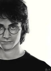 Potter by Charlzton