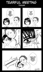 Tearful Meeting by tshuax