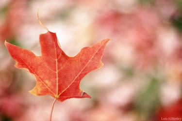 Autumn by Logosh-L