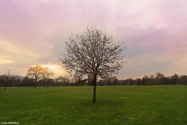 Hyde park - London by Logosh-L
