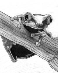 Cute Frog - Penciled by glitterkill