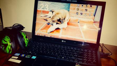 LeoDesktop by doomiest