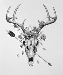 Deer Skull by TrentRedmon