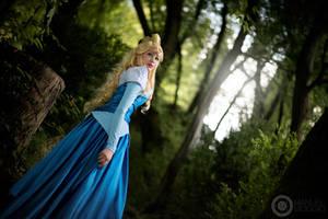 Follow a voice. Sleeping Beauty by Giuzzys
