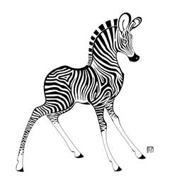 Little zebra by Bobbit95