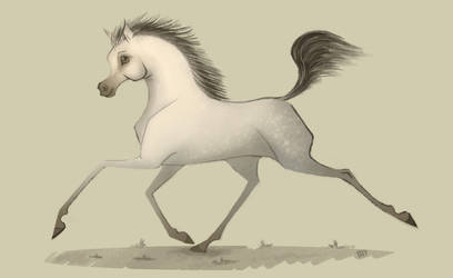 Arabian horse by Bobbit95