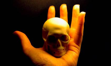 Skull by ElaineG